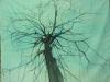 arbre200x190bdef